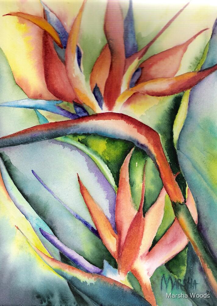 Bird of Paradise for Robert by Marsha Woods