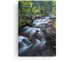 Yosemite Stream Canvas Print