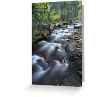 Yosemite Stream Greeting Card