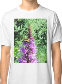 Macro Bumble Bee On Purple Flower Classic T-Shirt