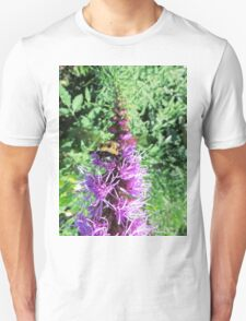 Macro Bumble Bee On Purple Flower T-Shirt