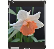 Soft Orange Daffodil iPad Case/Skin