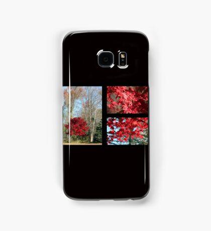 Red Maple Autumn Samsung Galaxy Case/Skin