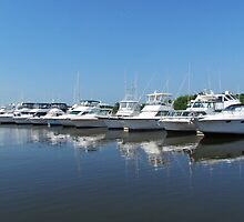 Ten Boats In A Row by Cynthia48
