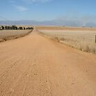 """Road to Elands Bay"" West coast South africa by lloyd jacobs"