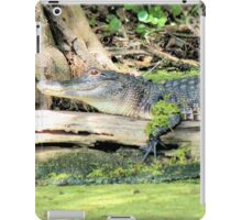 Stretch Gator iPad Case/Skin