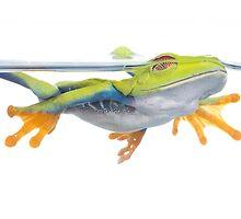 Swim by Angi Wallace