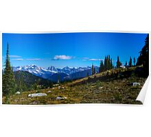 Meadow mountain View  Poster
