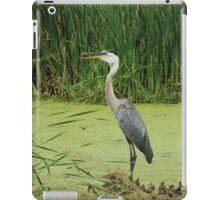 Great Blue Heron Standing iPad Case/Skin