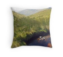 Contemplation - Connor Pass  Throw Pillow