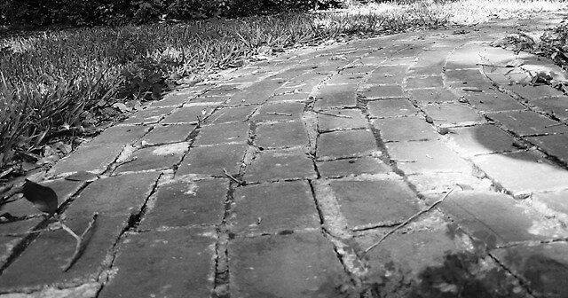 path by carlyalana06