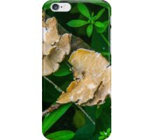 Stand out lichen iPhone Case/Skin