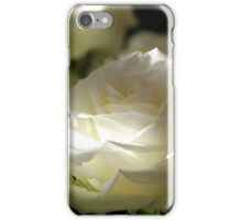 Pure and Beautiful White Rose iPhone Case/Skin