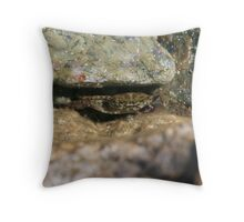 Hiding Crab Throw Pillow