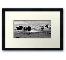 Dutch landscapes 5 Framed Print