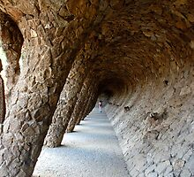Gaudi's Garden, Barcelona, Spain - 1st Oct 2007 by aaxford