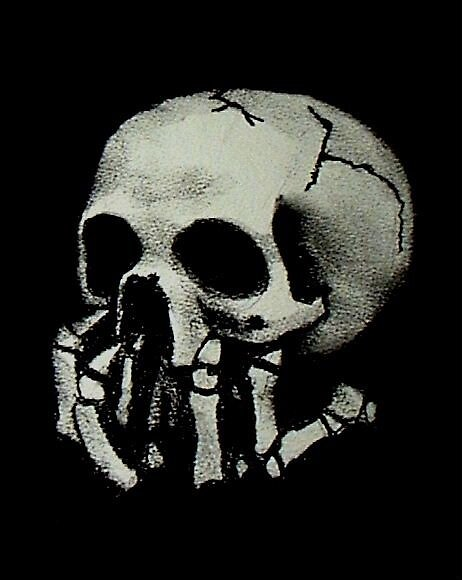Skull on Black by alisonbelinda
