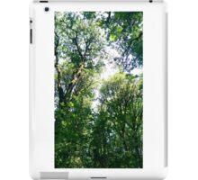 Canopy 3 iPad Case/Skin