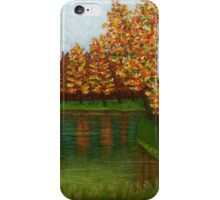 Colored reflections iPhone Case/Skin