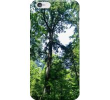 Canopy 4 iPhone Case/Skin