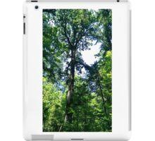 Canopy 4 iPad Case/Skin