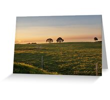 Maleny Greeting Card