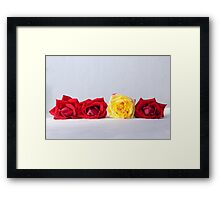 Stand out yellow rose, flower photography Framed Print