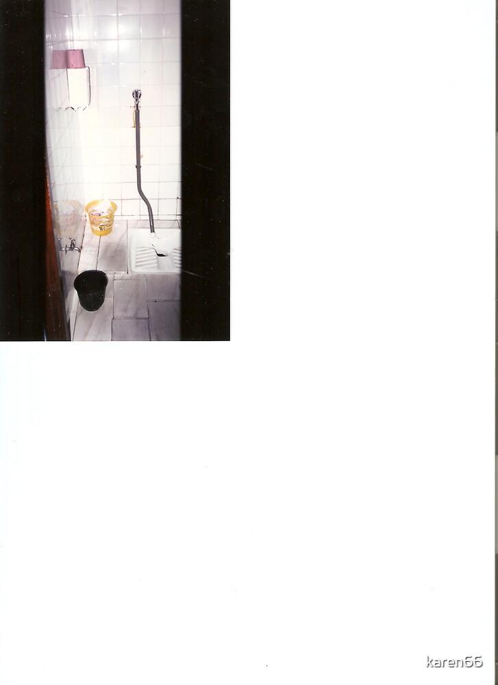 African Toilet by karen66