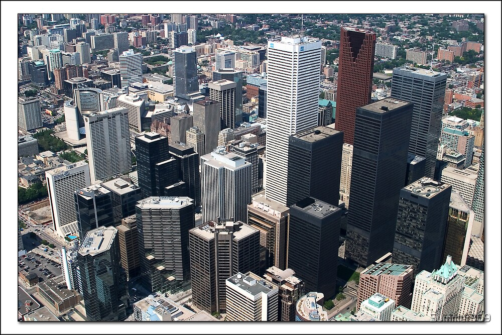 City of Toronto by Summer369