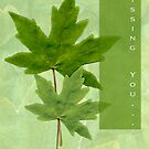 missing you card by Michele Roohani