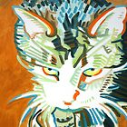 Enzo the homeless cat take 2 by gpolyklides