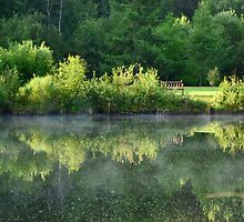 A Place to Reflect by Roxanne Persson