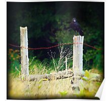 Rusty Barbed Wire Fence Poster
