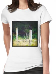 Rusty Barbed Wire Fence Womens Fitted T-Shirt