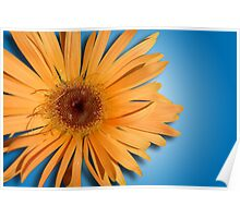 There's just something about a daisy . . . Poster