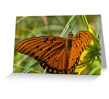 Butterfly Wish Greeting Card
