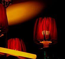 Spiegel Red by Leigh  Parkin