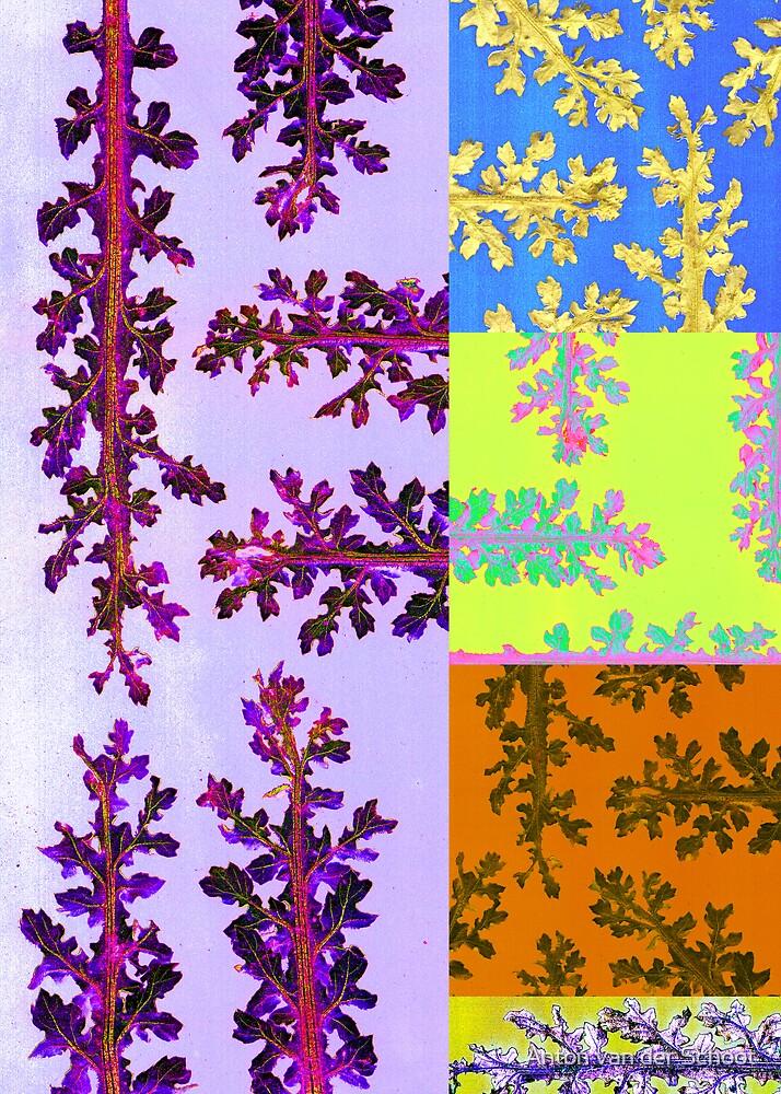 Weeds colored by Anton van der Schoot