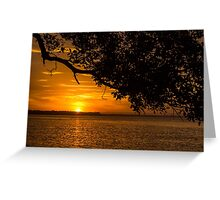 Shaded Sunset Greeting Card