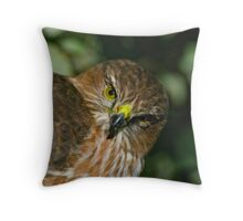 Sharp Shinned Hawk (juvenile) Throw Pillow