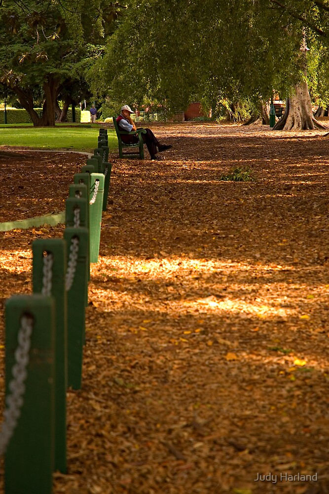 Shady Path, Brisbane Botanical Gardens by J Harland