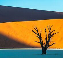 Deadvlei, Namibia by Chris Rusnak