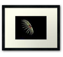 Firework.  Framed Print