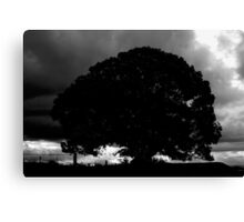 Mt Mee Sunset Silhouette Canvas Print
