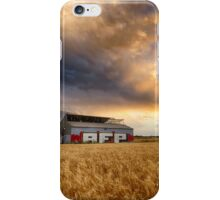 Wheat shed iPhone Case/Skin