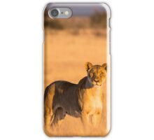 Lioness Stare Etosha National Park iPhone Case/Skin