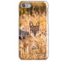 Jackal Etosha National Park iPhone Case/Skin