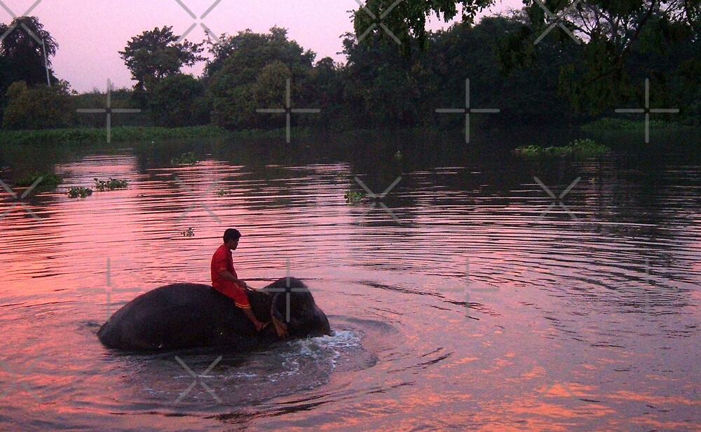 Mahout  by Emma  Brown