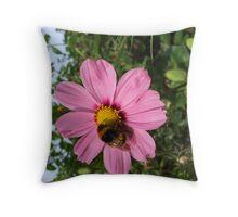 pollen feast Throw Pillow