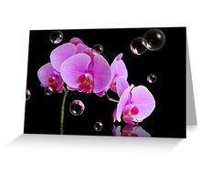 Beauty In Bubbles Greeting Card